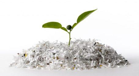 Recyclingquote von Papier liegt bei 79 Prozent