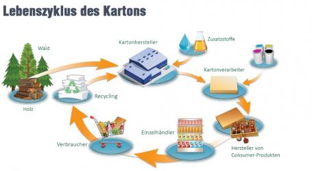 Neue CO2-Bilanz der europäischen Kartonindustrie
